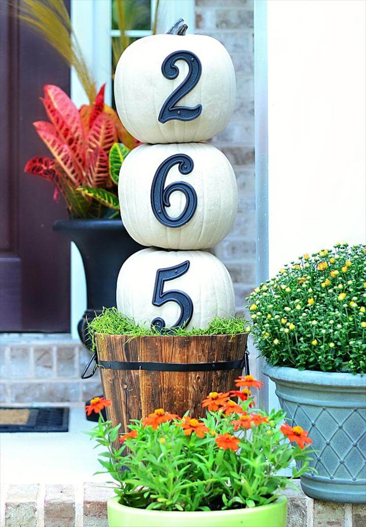 Fall Front Door Decorating Ideas