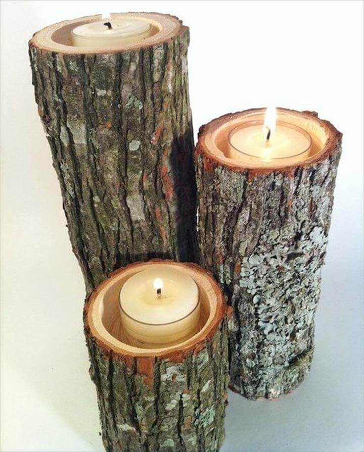 tree branches candles