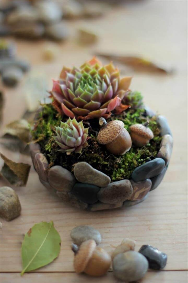 DIY Rock Mini Succulent Planter