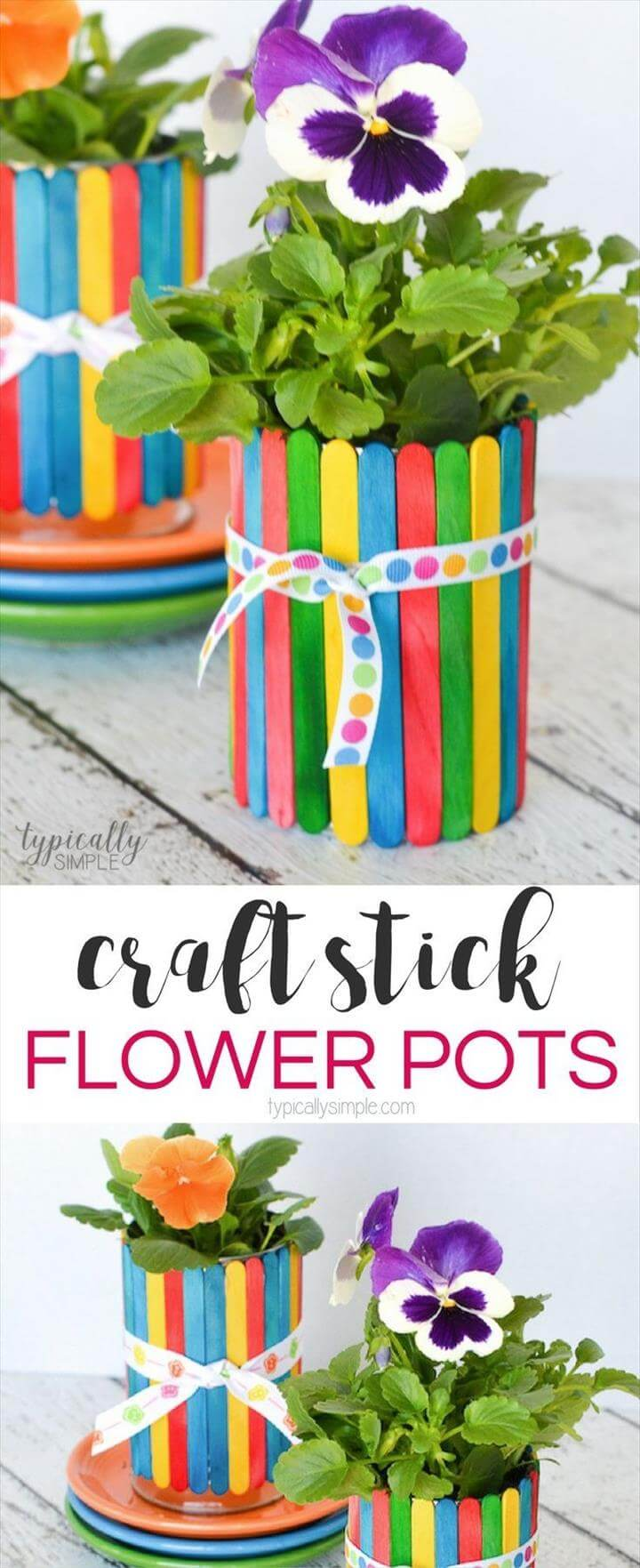 flower pot for motherday