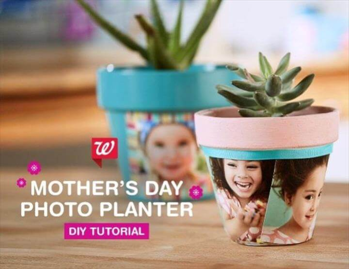 DIY Photo Planter
